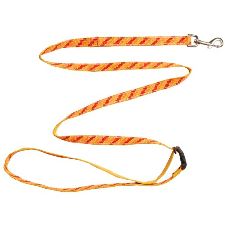 Chaco Webbed Dog Leash - 6' in Tangerine Steps