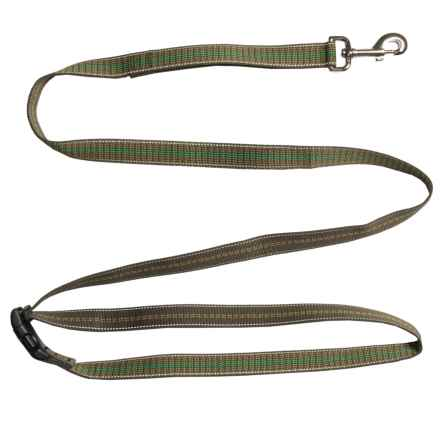 Chaco Webbed Dog Leash - 6' in Traffic Green - Closeouts
