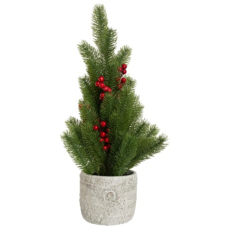 Image of Christmas Pine with Berries in Pot - 21?