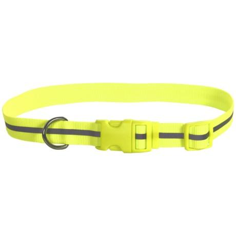 Coastal Pet Reflective Dog Collar