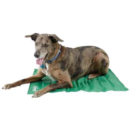 "Coleman Comfort Cooling Gel Dog Mat - Medium, 24x30"" in Green - Closeouts"