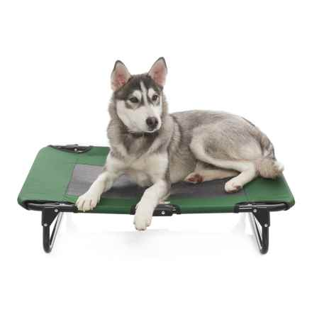 "Coleman Folding Dog Cot - 20x30"" in Green - Closeouts"