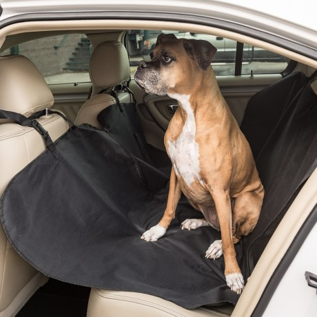 Coleman Pet Car Seat Cover in Black