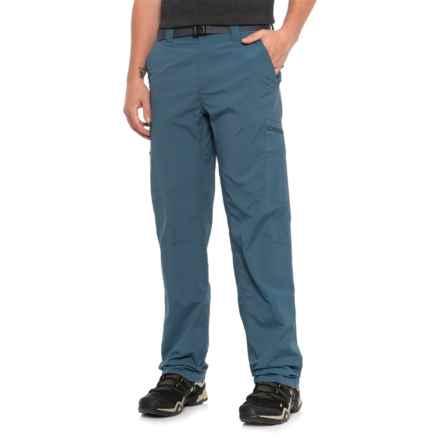 Columbia Sportswear Silver Ridge Cargo Pants - UPF 50 (For Men) in Whale
