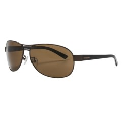 Coyote Eyewear PZG-02 Sunglasses - Polarized, Glass Lenses in Dark Brown/B-15