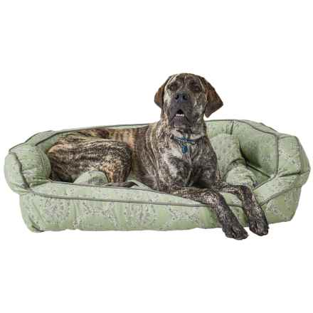 """Cynthia Rowley Rhode Medallion Bolster Dog Bed - XXL, 43x29"""" in Green - Closeouts"""