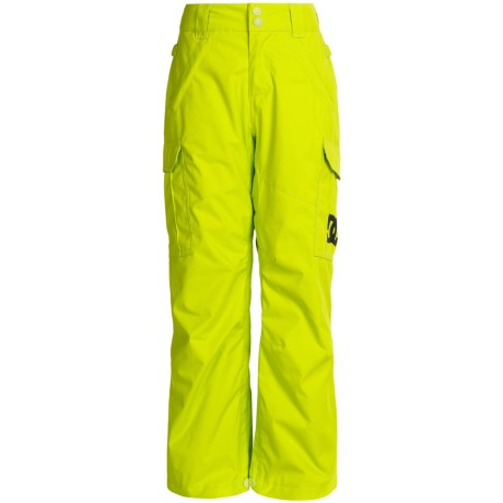 DC Shoes Banshee Snow Pants (For Big Boys)