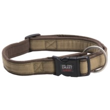"Dog Gone Smart Wear 5/8"" Dog Collar in Khaki/Brown - Closeouts"