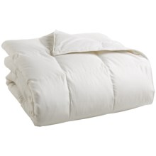 DownTown Summerfield Hungarian White Goose Down Comforter - Super Queen in White - Closeouts