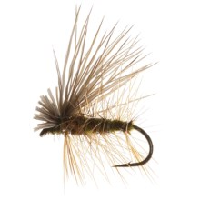 Dream Cast Elk Caddis Dry Fly - Dozen in Olive - Closeouts
