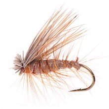 Dream Cast Foam Body Elk Hair Caddis Dry Flies - Dozen in Brown - Closeouts