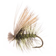 Dream Cast Foam Body Elk Hair Caddis Dry Flies - Dozen in Olive - Closeouts