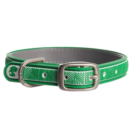 Dublin Dog Chevron No-Stink Waterproof Dog Collar in Green