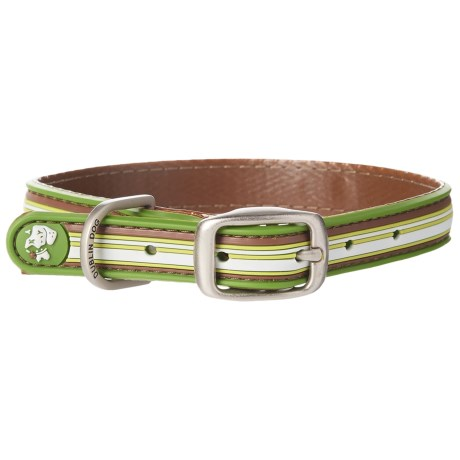 Dublin Dog Classic Stripe No-Stink Dog Collar - Waterproof in Green