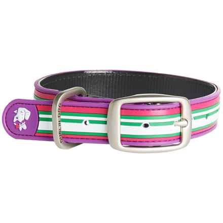 Dublin Dog Classic Stripe No-Stink Dog Collar - Waterproof in Purple - Closeouts