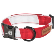 Dublin Dog Eco Dog Collar in Peppermint Twist - Closeouts