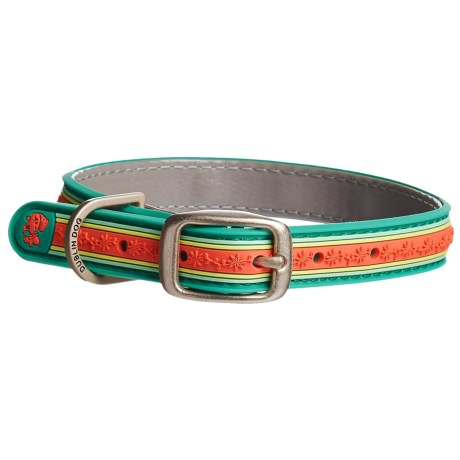 Dublin Dog Wild Flower No-Stink Waterproof Dog Collar in Turquoise/Fresh Guava