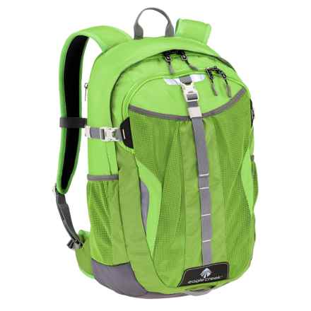 Eagle Creek Afar Backpack in Cactus Green - Closeouts