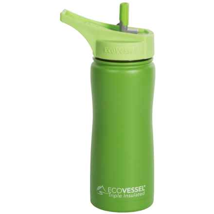 EcoVessel Summit Insulated Water Bottle with Straw - 17 fl.oz., BPA-Free in Mile High Green - Closeouts