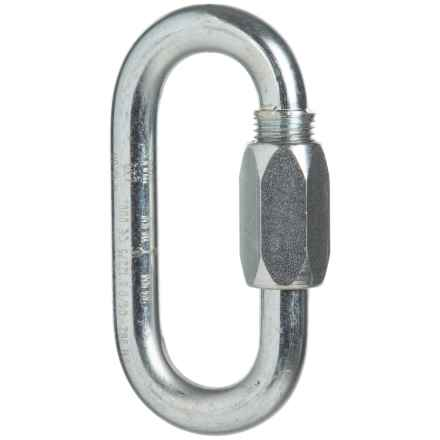 Edelrid Screwlink Carabiner - 10mm in Silver - Closeouts