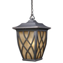Elk Lighting Shelburne 1-Light Outdoor Hanging Lantern in Weathered Charcoal - Closeouts