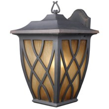 Elk Lighting Shelburne 1-Light Outdoor Sconce - Wall Mount, Large in Weathered Charcoal - Closeouts