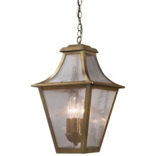 Elk Lighting Washington Avenue Outdoor Hanging Lantern - 3-Light in Coffee Bronze - Closeouts