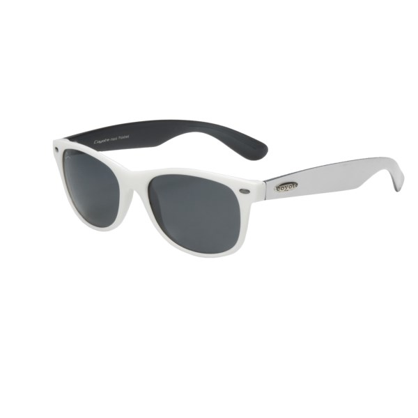 photo: Coyote Sunglasses D-21 Sunglasses