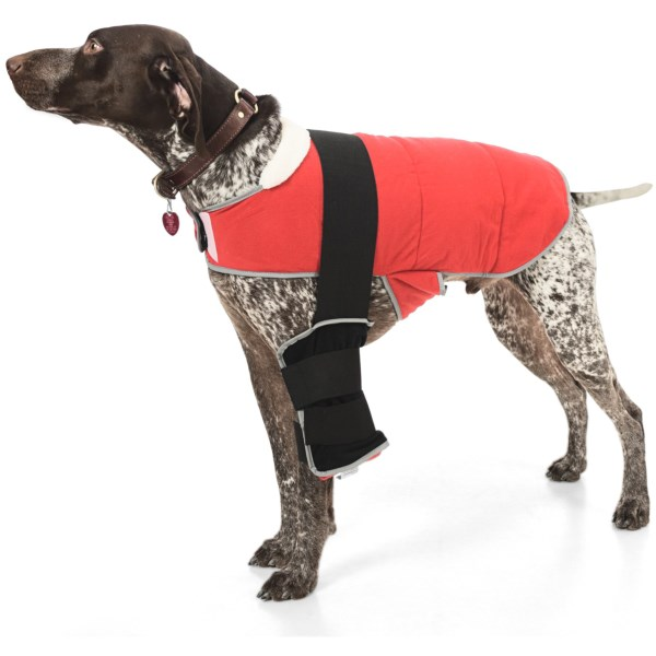 CLOSEOUTS . Get thermal therapy to your small dog with Warm Whiskers' reversible therapy jacket. Includes cold gel pack for post-op recovery and swelling reduction, and buckwheat-filled heat pack for sore joints and muscles. Available Colors: BLACK/RED.