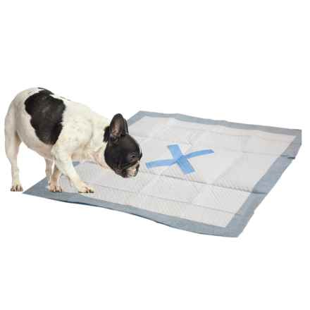 Ethical Pet X Marks the Spot Puppy Pads - 50-Count in Multi - Closeouts