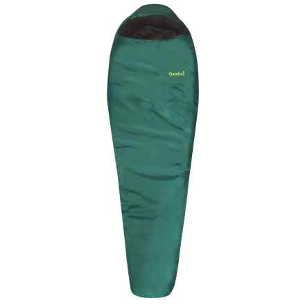 Eureka 0°F Wild Basin Sleeping Bag - Mummy, Long in Forest Green - Closeouts