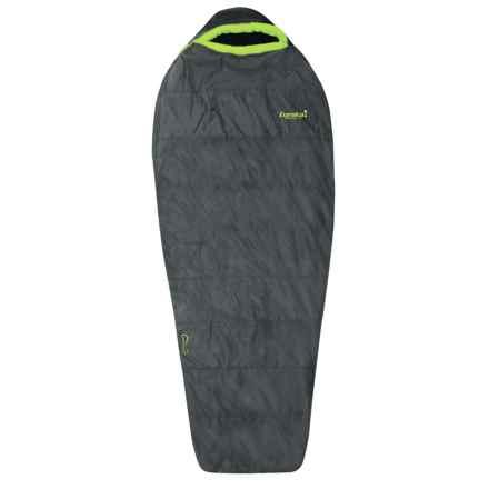 Eureka 20°F Bero Sleeping Bag - Mummy, Long in Gray - Closeouts