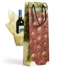 Evolve Masterpiece Wine Bottle Gift Bag in Red Grapes - Closeouts