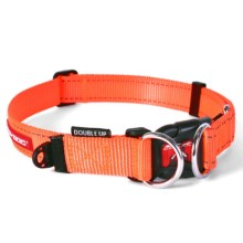 Ezydog Double Up Collar - Medium in Blaze Orange - Closeouts