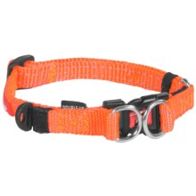 Ezydog Double Up Collar - Small in Blaze Orange - Closeouts