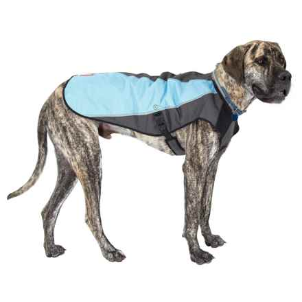 EzyDog Element Dog Jacket in Sky - Closeouts