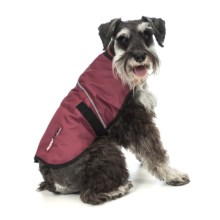 Ezydog Field Coat - XS in Burgundy - Closeouts