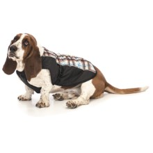 Ezydog Mission Coat - Medium in Tartania - Closeouts