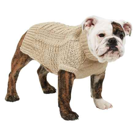 Fab Dog Chunky Sweater in Oatmeal - Closeouts