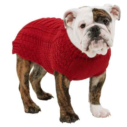 Fab Dog Chunky Sweater in Red - Closeouts