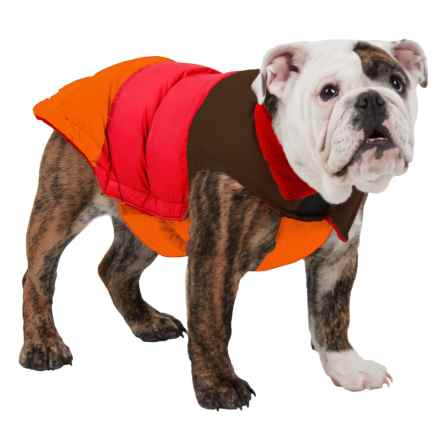 Fab Dog Color-Block Puffer Dog Jacket - Insulated in Brown/Red/Orange - Closeouts