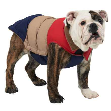 Fab Dog Color-Block Puffer Dog Jacket - Insulated in Red/Tan/Navy - Closeouts