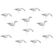 Flambeau Snow Goose Shell Decoys - Dozen, 1-Piece in See Photo - Closeouts