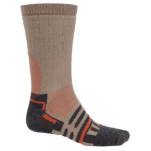 Forest and Field Heavyweight Socks - Merino Wool, Crew (For Men) in Earth - 2nds