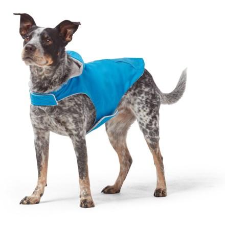 "5283b7e668b14 Free Country Brilliant Blue Dog Rain Jacket - Waterproof, 12"", Small in  Brilliant"