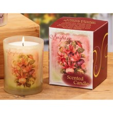 "Gail Marie ""Citrus Dream"" Scented Candle - 8 oz. in Inspire - Closeouts"