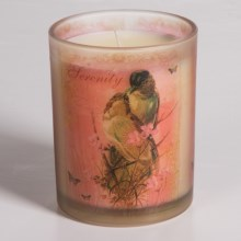 """Gail Marie """"Citrus Dream"""" Scented Candle - 8 oz. in Serenity - Closeouts"""