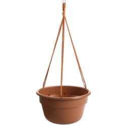 "Garden Scene Dura Cotta Hanging Flower Basket - 12"" in Terra Cotta"