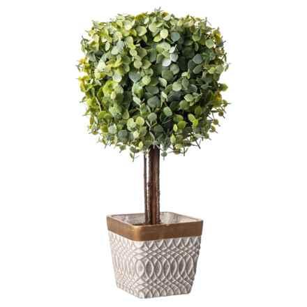 """Gardener's Eden Eucalyptus Ball Tree in a Pot - 20"""" in Grey/Gold - Closeouts"""