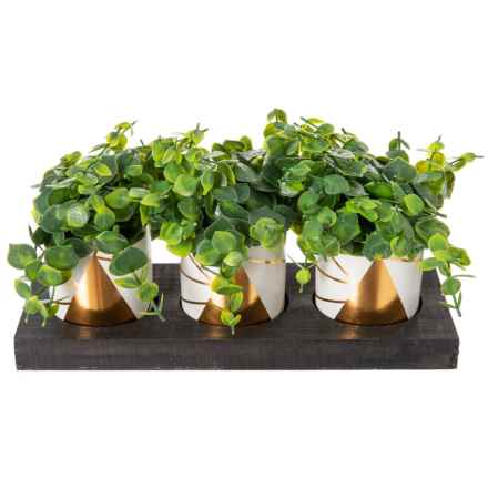 "Gardener's Eden Set of 3 Eucalyptus in Marble Ceramic Pots & Wood Tray - 12x7.5"" in Gold/White/Black - Closeouts"